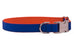 Florida Orange on Royal Blue Belle Bow Dog Collar