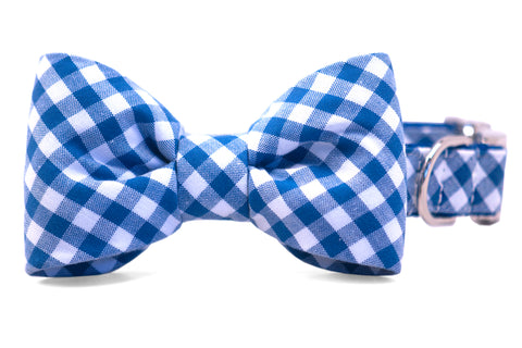 Royal Blue Picnic Plaid Bow Tie Dog Collar