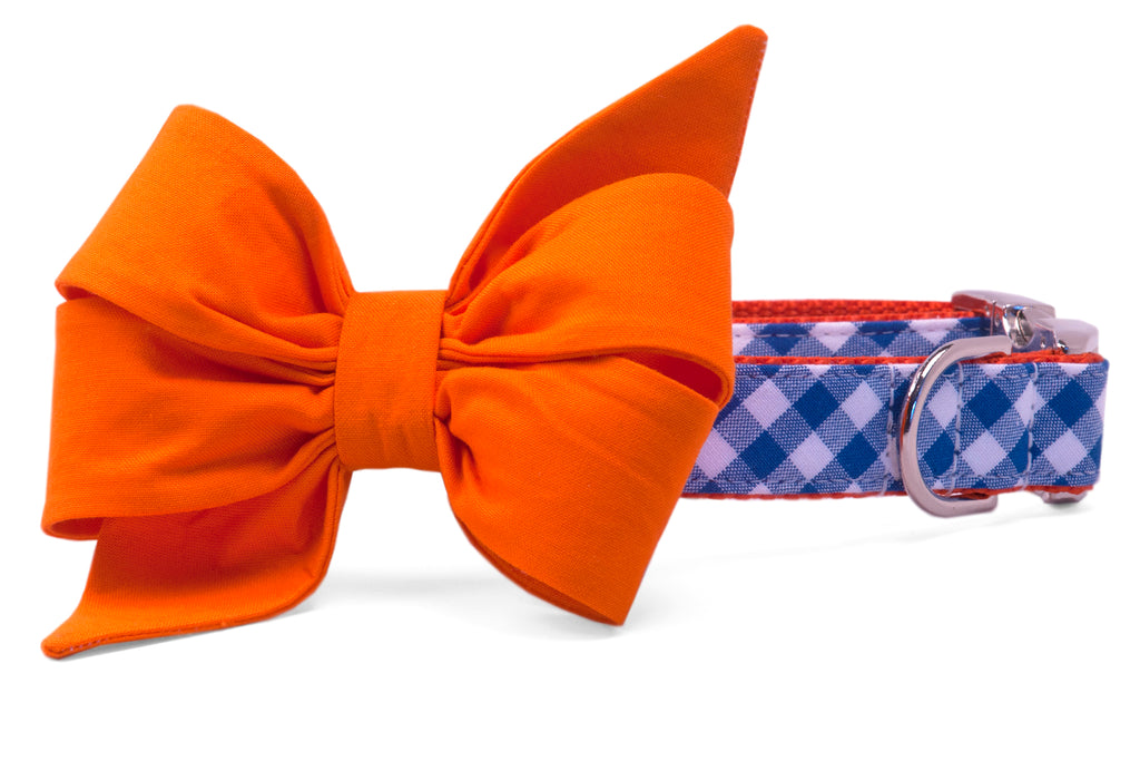 Florida Orange on Royal Blue Check Belle Bow Dog Collar