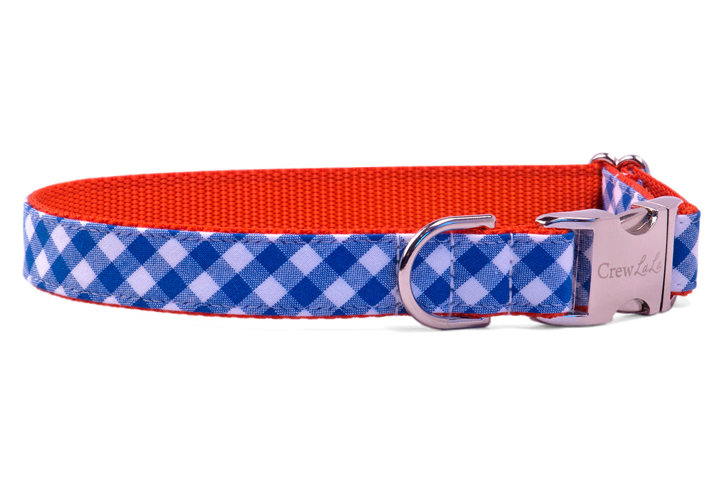 Florida Blue Check on Orange Dog Collar
