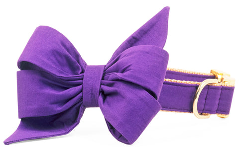 Royal Purple Belle Bow Dog Collar