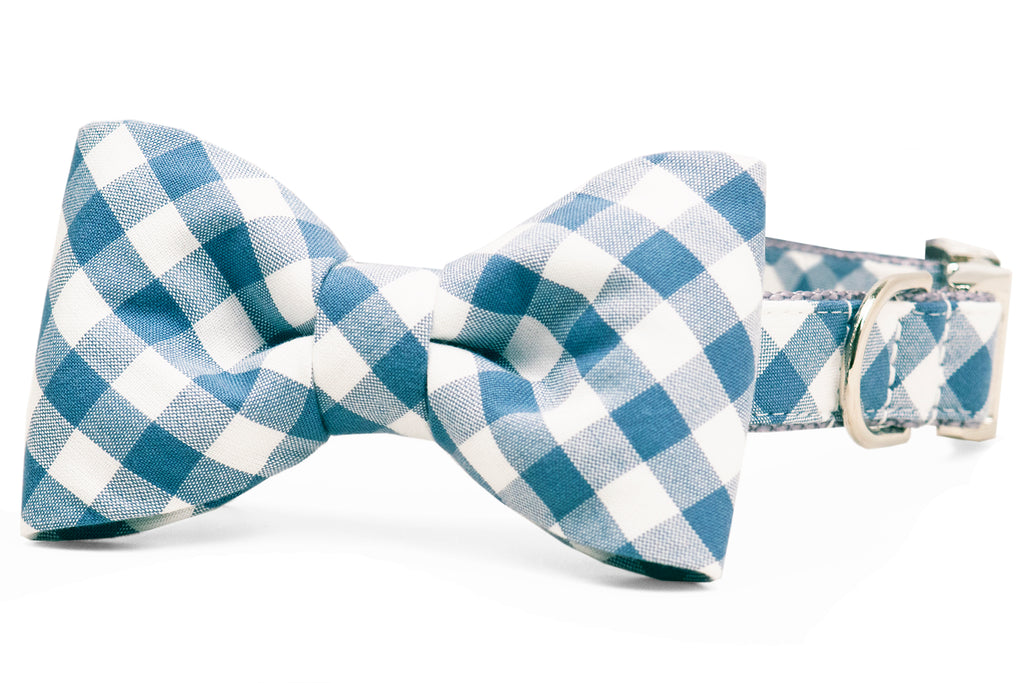 Slate Blue Check Bow Tie Dog Collar