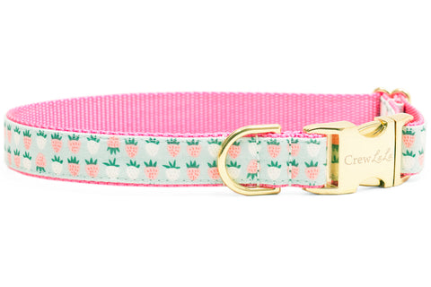 Mint Strawberries Dog Collar - Two Styles!