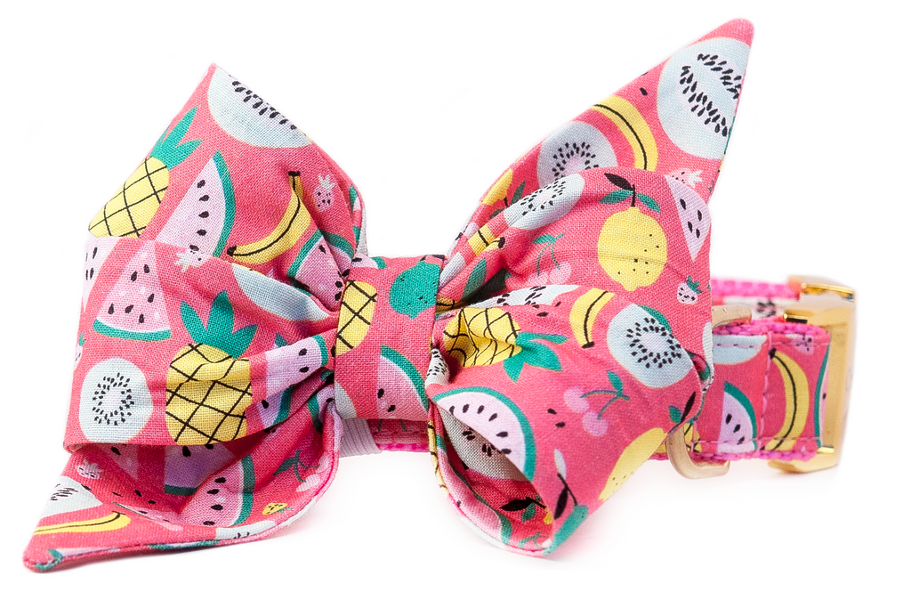 Summer Sangria Belle Bow Dog Collar
