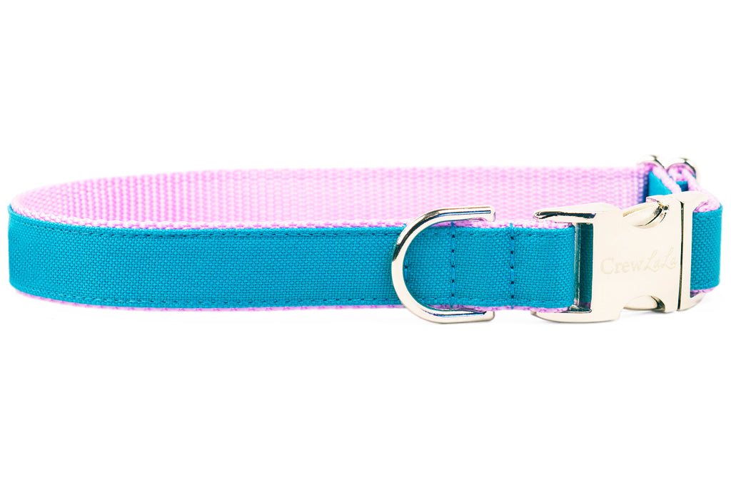 """Ruff-N-Tuff"" Teal on Lavender Everyday Dog Collar"