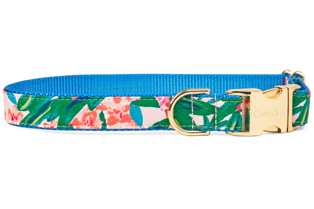 Tropical Paradise Dog Collar