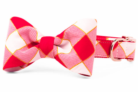 Harlequin Plaid Bow Tie Dog Collar