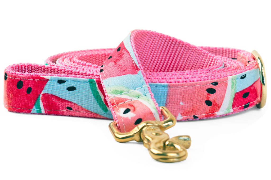 Watercolor Watermelon Matching Leash