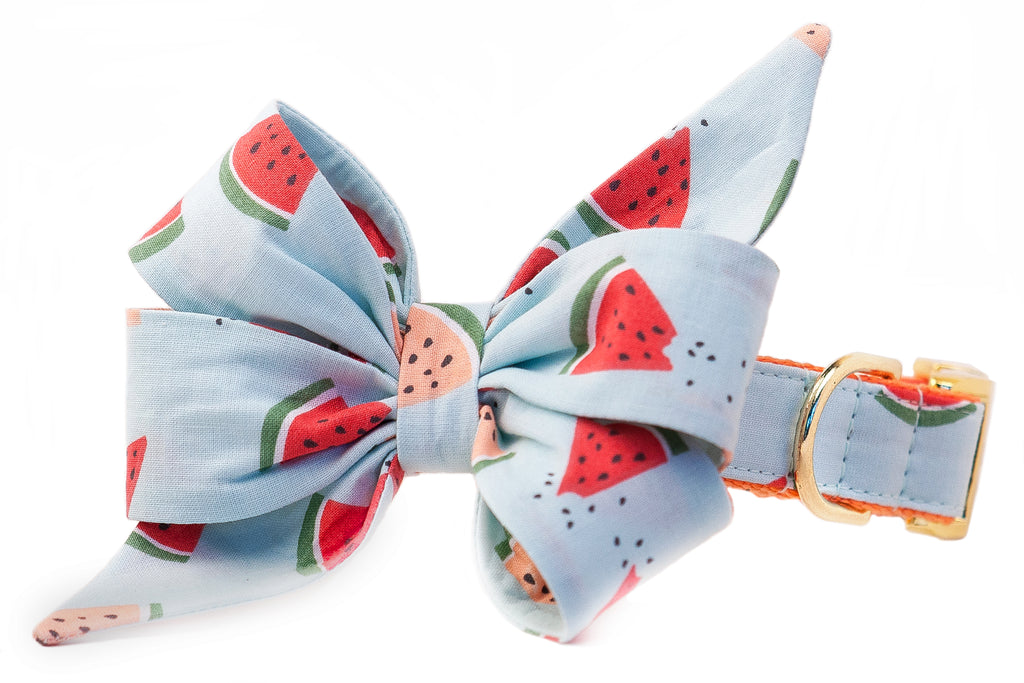 SALE BELLE BOW COLLAR - Melon Party on Tangerine