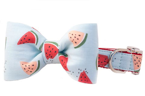 SALE BOW TIE COLLAR - Melon Party - Two Styles
