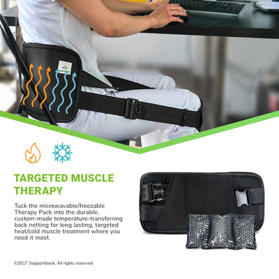 Posture Therapy Lumbar Support Back Brace