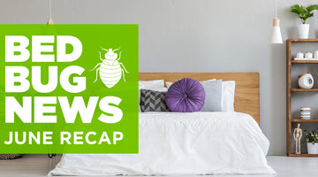 Bed Bugs in the News: June Recap