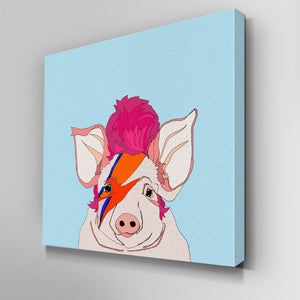 Piggy Stardust Canvas Picture