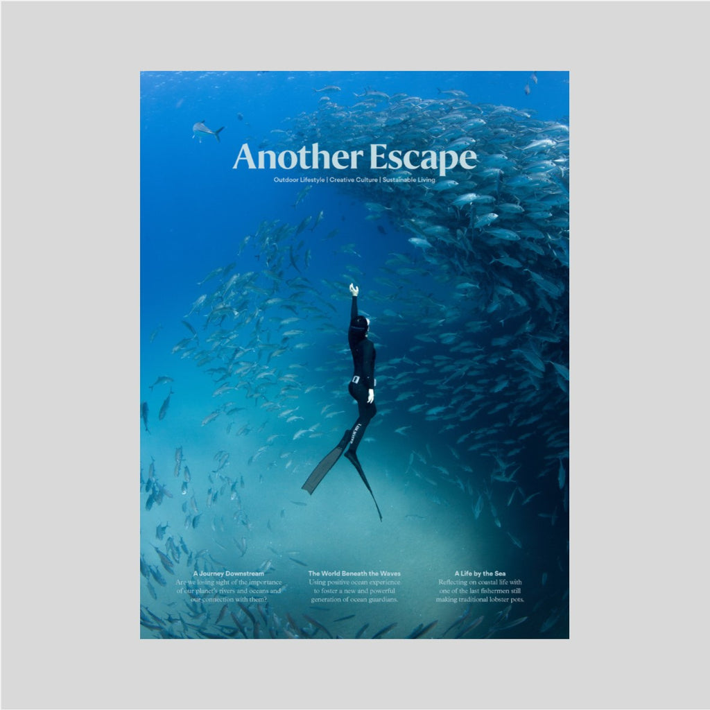 Another escape - Volume 12