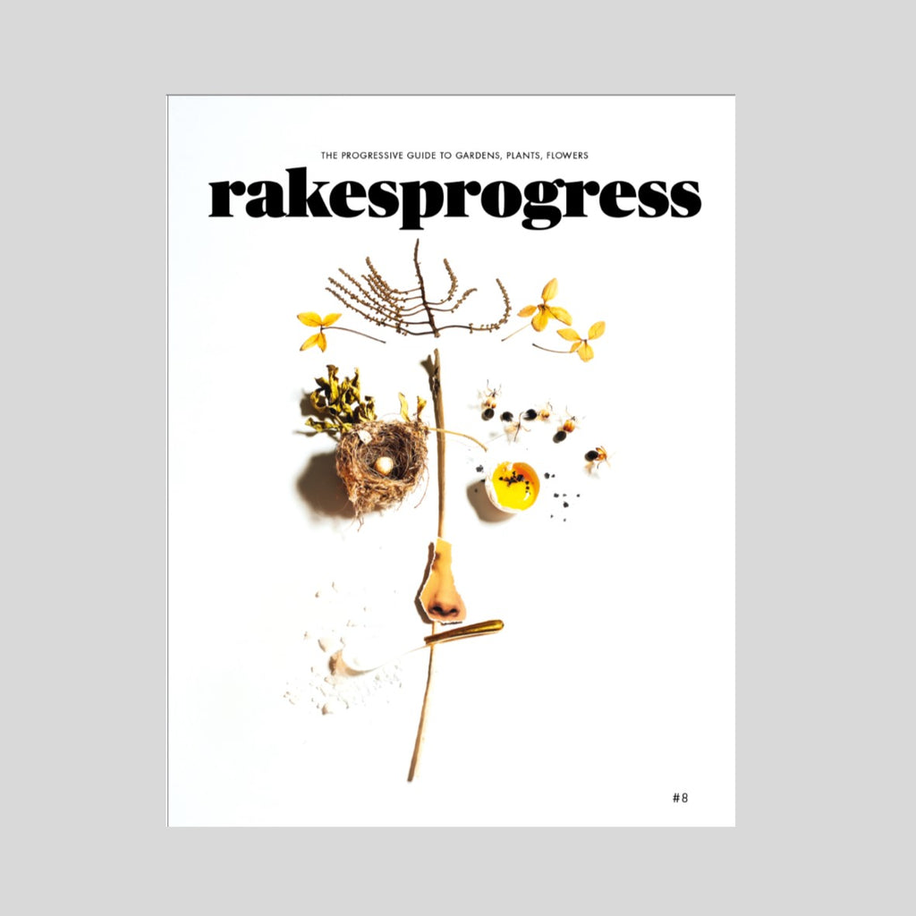 Rakesprogress - issue 8