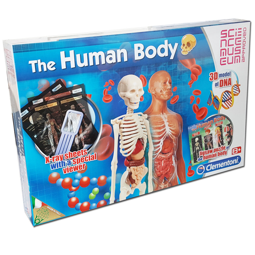 Clementoni The Human Body Playset With 30 Model DNA