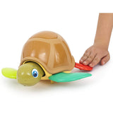 Play Fun Turtle Fun Combination Game
