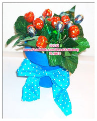 FL1013 CHOCOLATE DOVE HEART FLOWERS
