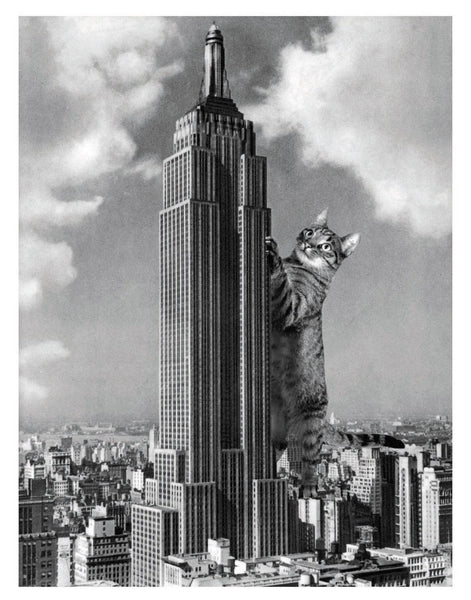 Cat-astrophe: Empire State Building