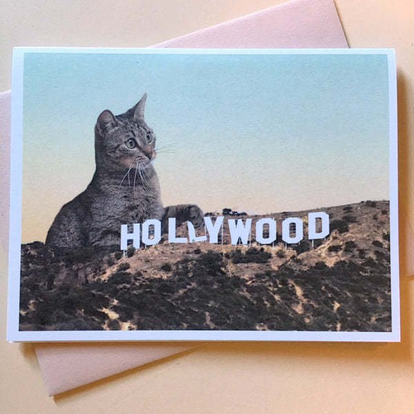 Cat-astrophe: The Hollywood Sign