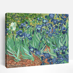 Vincent Van Gogh Irises | Paint By Numbers