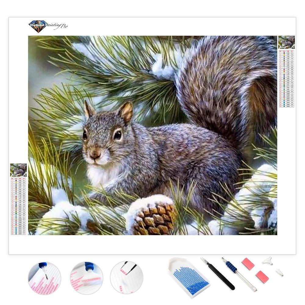 Looking for a Nut | Diamond Painting