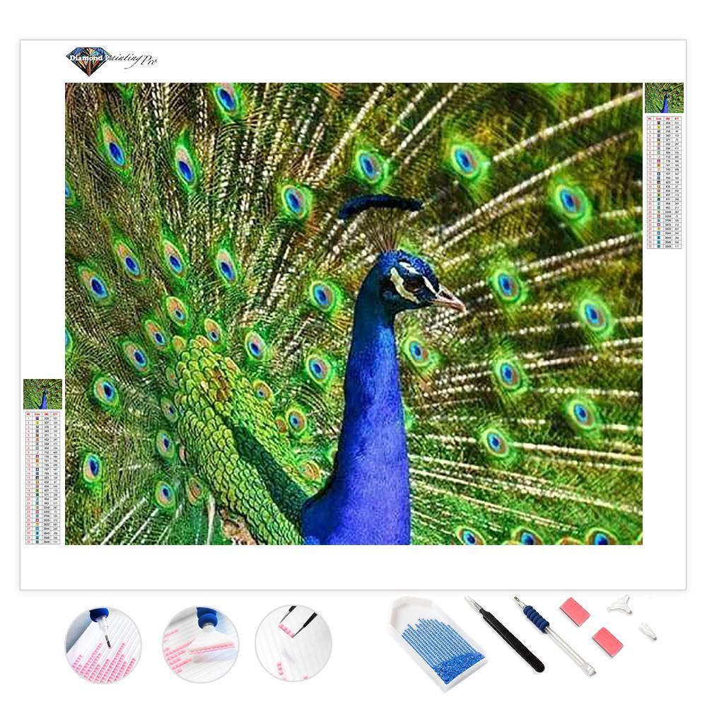 Beautiful Peacock | Diamond Painting