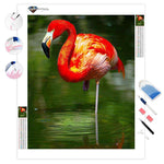 Flamingo Reflection | Diamond Painting