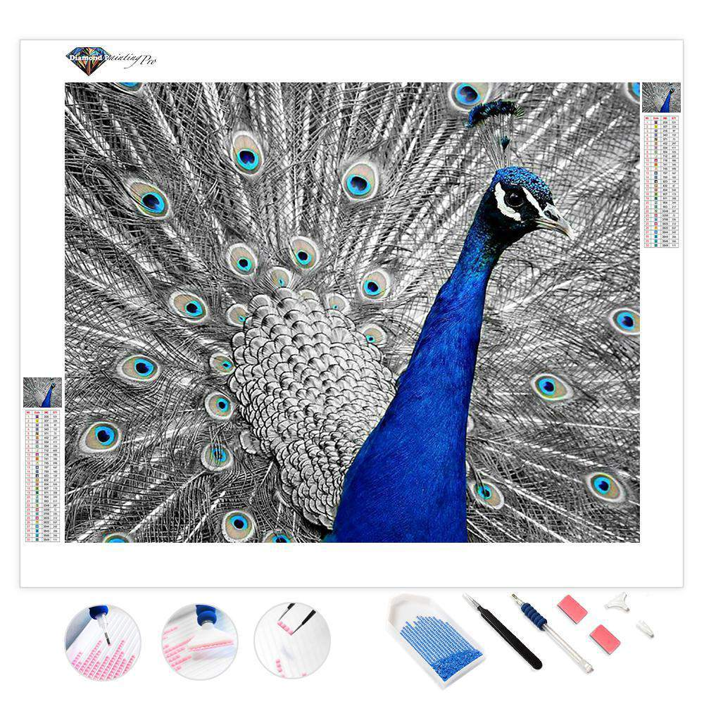Monochromatic Peacock | Diamond Painting