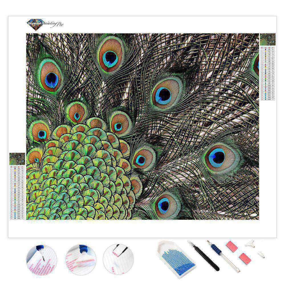 Peacock Feathers | Diamond Painting