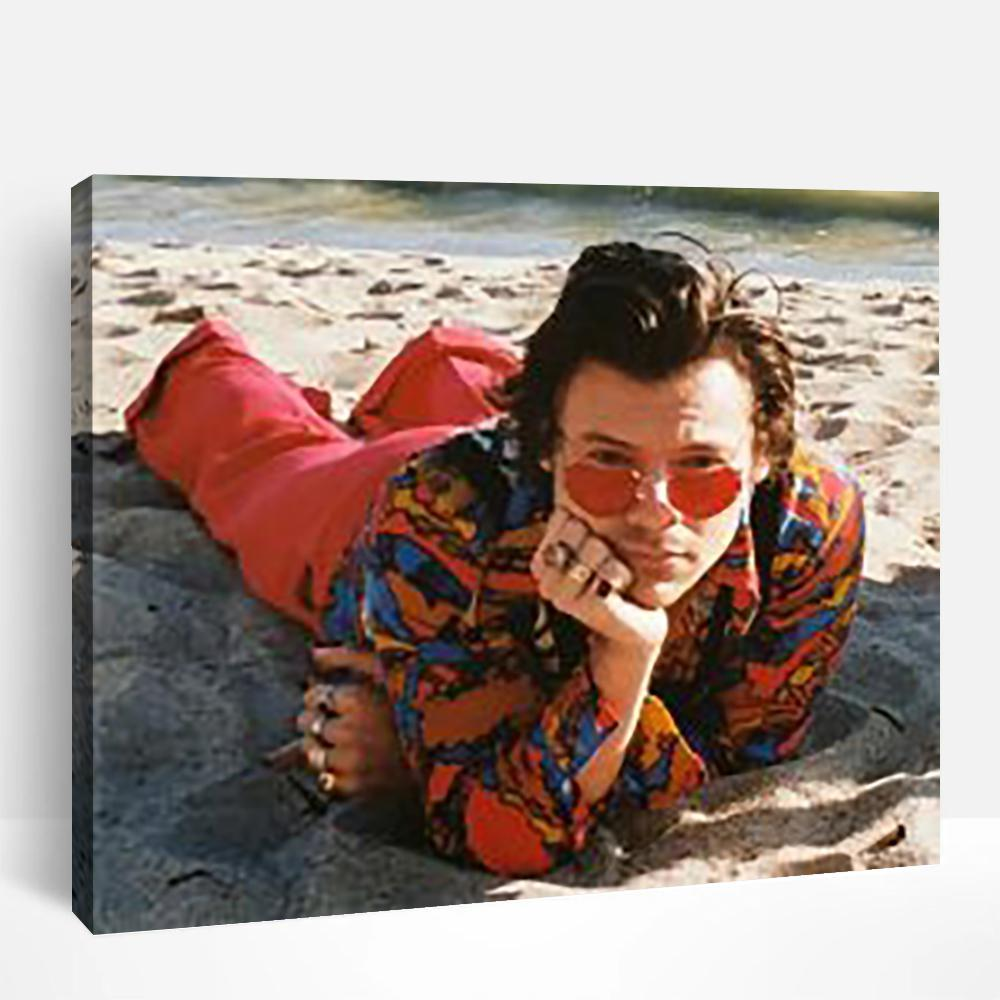 Harry Styles Malibu Beach | Paint By Numbers