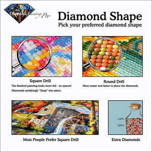 high quality customize diamond painting | round drills and square drills