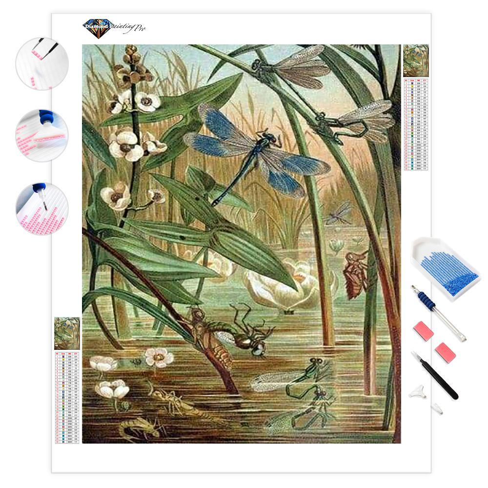 Swamp Party | Diamond Painting