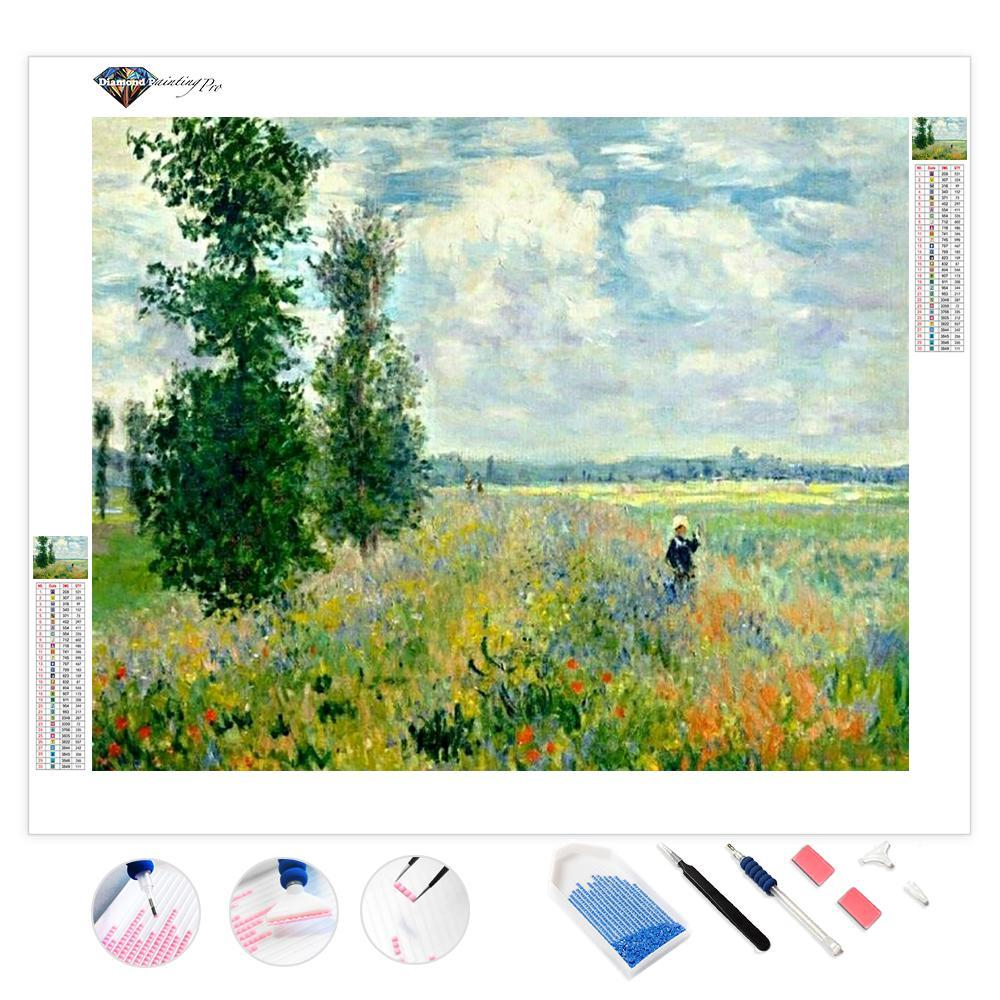 Poppy Fields Near Argenteuil Claude Monet | Diamond Painting