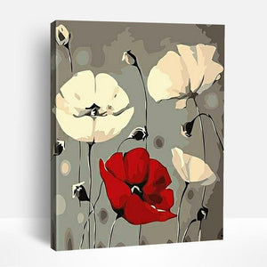 Red White Poppy Flower | Paint By Numbers
