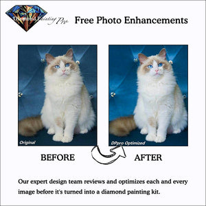 free photo enhancements by diamond painting pro