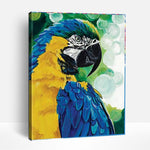 The parrot | Paint By Numbers