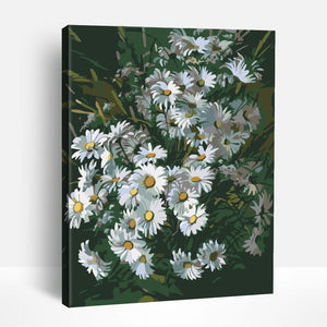 Wild Daisies | Paint By Numbers