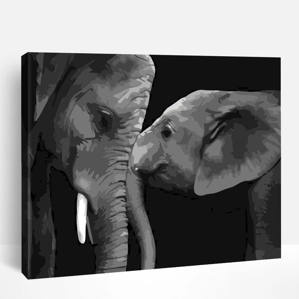 Elephants | Paint By Numbers