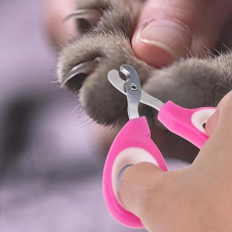 Pet Nail Toe Claw Clippers Scissors