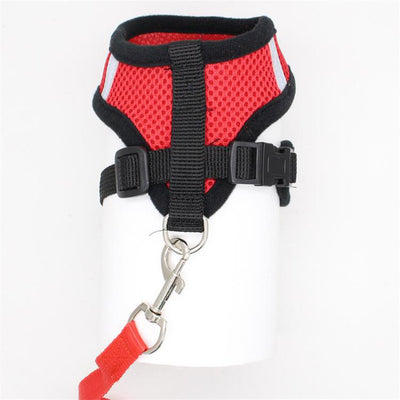 Polyester Mesh Harness