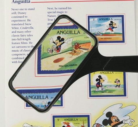 Picture of Magnifying Glass 2 X4  Rectangular