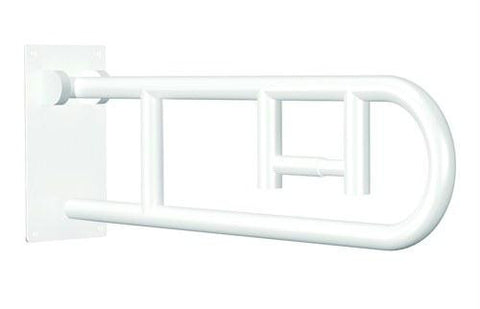 Picture of Flip-Up Grab Bar  White Powder Coat  w/ Integrated TPH