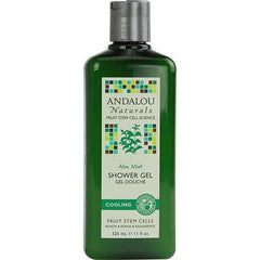 Andalou Naturals Shower Gel Aloe Mint Cooling - 11 fl oz