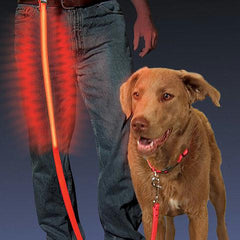 Nite Dawg Leash Red
