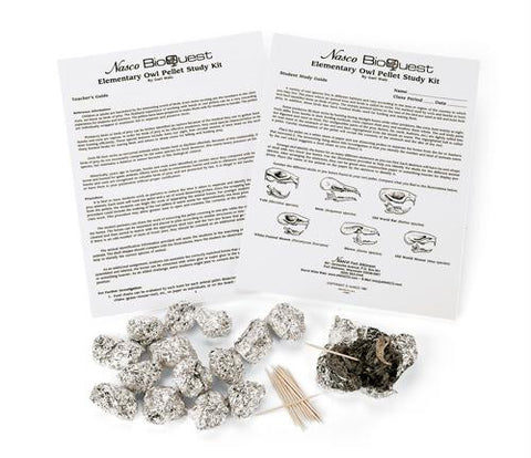 Picture of Elementary Owl Pellet Kit