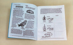 Owl Pellet Teacher's Manual