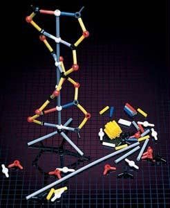 Picture of DNA Model - 12 Packets