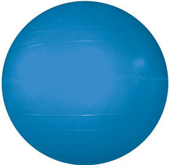 "Therapy/Exercise Ball - 55cm/22"" Dia. (Blue)"