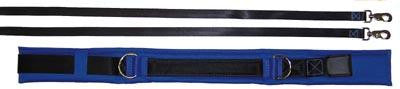 Picture of Spotting & Training Belt - Small - Blue